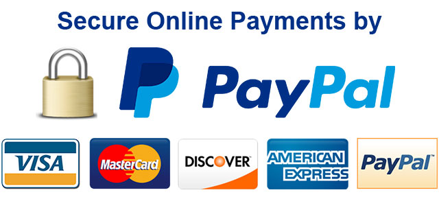 Pay your I.T. ZAP Invoice Online