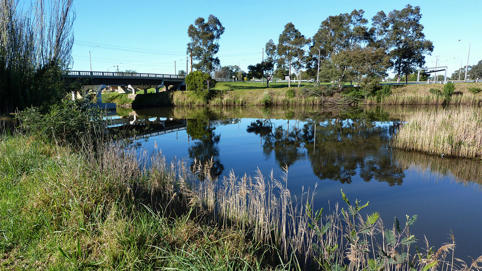 Mitchell River Backwater, Howitt Park, Bairnsdale