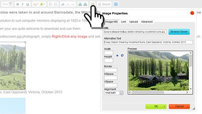 How to insert a photo into the body of your webpage